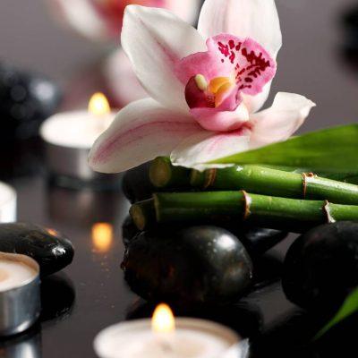 spa-wellness (1)